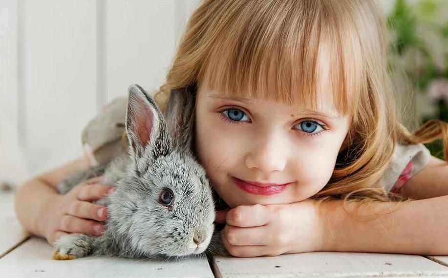 holčička s králíčkem